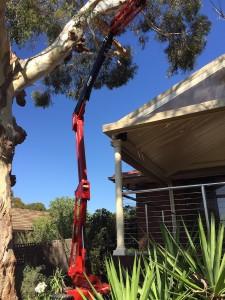 Zeus 1893 spider lift hire tight access